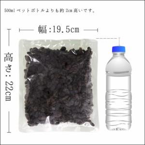 レーズン500g 砂糖不使用 無添加 ドライフルーツ レーズン 送料無料 カリフォルニア