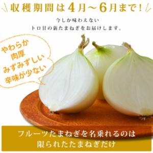 \産地直送/ 送料無料 淡路島産 フルーツ新玉ねぎ 4kg (M〜Lサイズ15〜22個程度)【同梱不可】