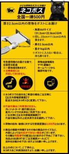 【メール便可能】コクヨ クリヤーブック替紙(カラーマット)<B5縦/10枚> ラ-881N