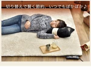 【送料無料】 ホットカーペット 2畳 176×176 本体 電気カーペット 床暖房カーペット 暖房器具 暖房 2畳用  6時間自動切りタイマー
