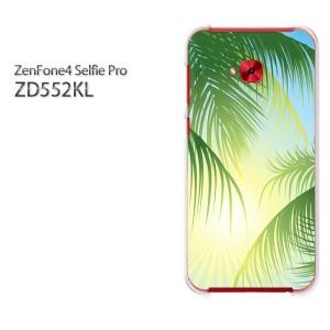ゆうパケ送料無料スマホケース ハード ZenFone4 Selfie Pro ZD552KL クリア シンプル・ヤシの木(グリーン)/zd552kl-pc-new1577]