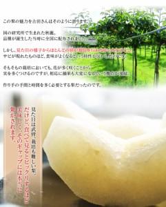 梨 ナシ 【糖度12度以上】 送料無料 熊本県産 『秋麗』 秀品 約1.8キロ (5〜7玉入) 冷蔵