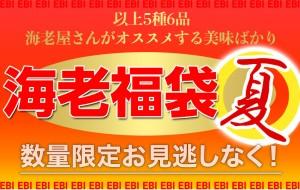 【最終40】 福袋 夏休み えび 海老福袋【夏】 合計5種 総重量1.75キロ 冷凍 送料無料