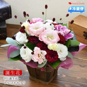 [冷蔵便]でお届け 誕生花を使ったフラワーアレンジメント 誕生花の生花アレンジSサイズ 9月 トルコキキョウ 誕生日 プレゼント 花 女性