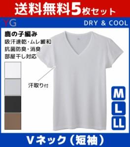 5枚セット YG ワイジー COOLMAGIC クールマジック 汗取り付きVネックTシャツ 短袖 Mサイズ Lサイズ LLサイズ グンゼ GUNZE 涼感 YV1012