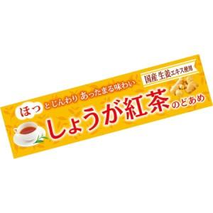 【送料無料】ライオン 10粒しょうが紅茶のど飴 10入