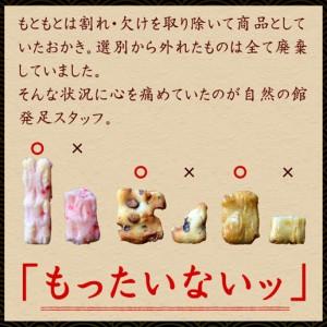 送料無料 訳あり 割れおかきミックス 1kg (500g×2)  お菓子 スイーツ おつまみ 駄菓子 おやつ 自然の館 秋
