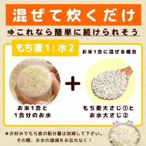 もち麦 1kg (500g×2)  雑穀 雑穀米 大麦 送料無料 米 お米 もちむぎ 訳あり 自然の館 味源 ダイエット 無添加