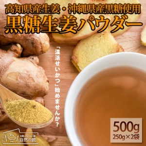 黒糖生姜パウダー250g×2 黒糖 生姜 しょうが 粉末 業務用 簡易包装 美容 健康 ダイエット  自然の館