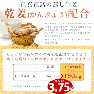 送料無料 高知県産生姜100% 生姜パウダー70g 最大700杯分 しょうがの花嫁 国産 生姜粉末 訳あり 通常1,380円のところ数量限定666円セール