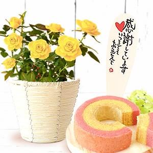 薔薇「黄色」&苺バウム