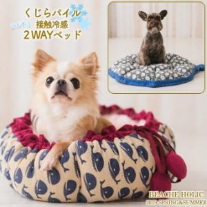 ビーチェ Beache Holic くじらパイル 接触冷感 2WAYベッド(ピンク ブルー)■ 犬 ベッド 春夏用 小型犬 NemNem