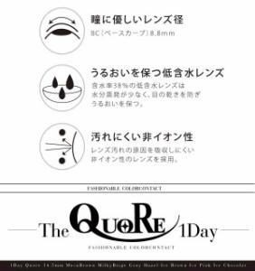 在庫限 送料無料 度なし度あり14.5mmカラコン 10枚 クオールワンデー QuoRe 1day グレイ ブラウン ベージュ ピンク ハーフ瞳