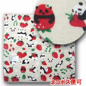 苺香ちゃんの画像