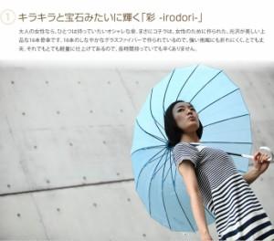 【g81005】傘 16本 骨傘 ブランド 軽量 55cm 雨傘 レディース アンブレラ グラスファーバー %OFF 雑貨 おしゃれ 子供用 グラス骨 シンプ