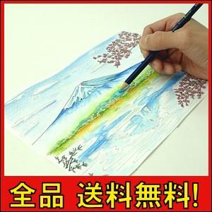 大人 塗り絵 水彩絵の具の通販wowma