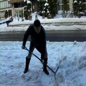 【すぐ使えるクーポン進呈中】【送料無料!ポイント2%】 カチ割りプッシャー  雪カット 雪おとし 雪かき 雪掻き 除雪