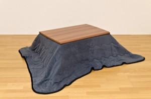 【送料無料!ポイント2%】リバーシブル こたつ薄掛け布団 170×200  軽量で薄掛けなのに、驚くほどの暖かさです!