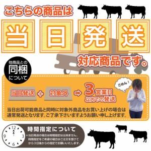 【冷凍】柔らか焼肉カルビ丼 湯せんで簡単 1人前 (12時までの御注文で当日発送、土日祝を除く)(惣菜)