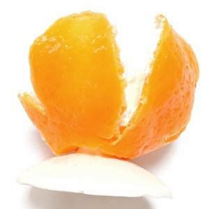 アトリエステラ 食品サンプル オレンジ みかんの皮 印鑑  スタンド K5