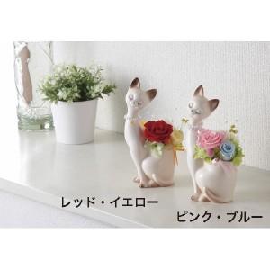 父の日 プレゼント 花 ローズキャット(プリザーブドフラワー)