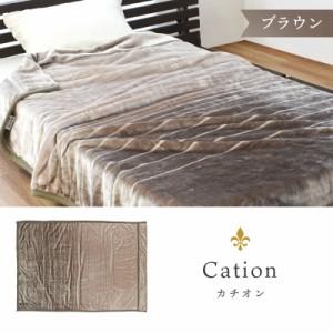 カチオン/ブラウン