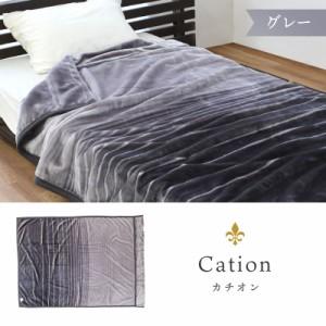カチオン/グレー