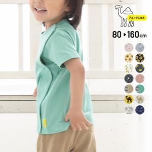 半袖 Tシャツ キッズ 子供服 前開き ボタン 男の子 女の子 アルトタスカル 夏 80 90 100 110 120 130 140 150 160cm