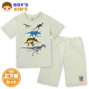 【送料無料】男児 キッズ 本体綿100% 半袖 Tシャツスーツ 上下組 恐竜プリント ウエストゴム 装飾ワッペン ポケット 子供服 男の子 100c