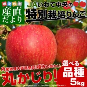 岩手県より産地直送 JAいわて中央 皮ごとまるごと!特別栽培りんご 5キロ (14玉から25玉) 林檎 リンゴ 送料無料 御歳暮 お歳暮 ギフト