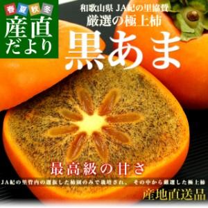 和歌山県より産地直送 JA紀の里 黒あま 2キロ(8玉から9玉) 送料無料 カキ かき 柿 産直だより