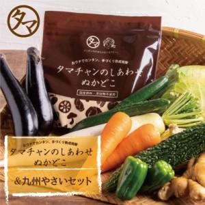 【送料無料】九州野菜5品セット&無添加ぬかどこセット (クール便) 宮崎で摂れた美味しい野菜をタマチャンショップが選りすぐりでお届け