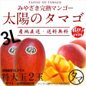 太陽のタマゴ 特大玉2玉 最高級 フルーツ マンゴー 宮崎 果物 香り 糖度 プレミアム ギフト プレゼント 父の日 送料無料 のし対応可能