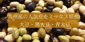 【送料無料】♪ランキング1位の今話題の煎り豆がミックスになって登場!そのまま大豆の栄養をサクサク食べれる無添加ヘルシーな焙煎大豆