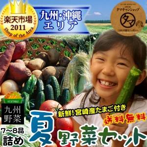 【送料無料】九州野菜ミニミニお試しセット九州野菜7〜8品でお届け九州で摂れた美味しい野菜をタマチャンショップが選りすぐりでお届け!