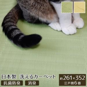 ペット ラグ 洗える 粗相 カーペット 犬 猫 ラグ  江戸間6畳  約 261×352cm 水をはじく 汚れ にくい い草風   防ダニ   日本製 撥水