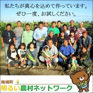 2018年ご予約承り中 8月出荷開始 送料無料 北海道産 とうもろこし 南幌町明るい農村ネットワーク あまいんです(80本)