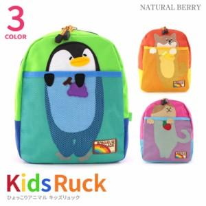 【送料無料】 リュック ひょっこりアニマル 推奨身長 90cmから130cm程度園児 幼児 子ども ねこ いぬ ペンギン 可愛い K-732 MOMENTUM KID