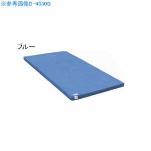 淡野製作所 体操 運動マット  カラー 裏面ノンスリップ加工 カラー体操マットDX DKすべり止め 120×240サイズ ブルー D-4637B