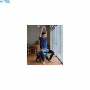 羽立 エクササイズ フィットネス エクササイズボール クラウドチェア HATACHI NH3650