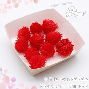 千日紅に似たトゲトゲのドライフラワー 10個[レッド]★押し花 ハーバリウム花材 アロマワックスバー アロマワックスサシェ