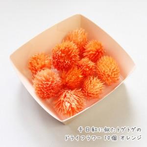 千日紅に似たトゲトゲのドライフラワー 10個[オレンジ]★封入材料 ドライフラワー 花材 花 フラワー レジン封入パーツ ハーバリウム花材