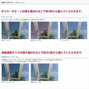 YKK ap 躯体式バルコニー屋根 ヴェクター 柱奥行移動タイプ 1.5間×4尺 アール型 熱線遮断ポリカ屋根