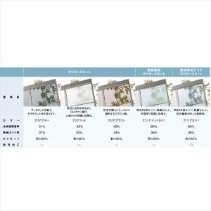 リクシル  スピーネ 1.0間×6尺 テラスタイプ 20cm(600タイプ)/関東間/R型/標準仕様 熱線吸収