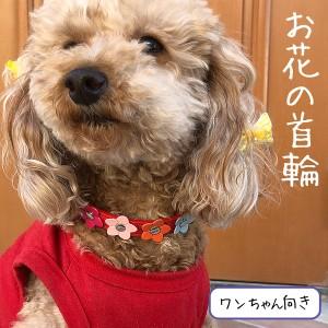 【新登場】猫 首輪 室内犬 小型犬 首輪  かわいい お花 春夏 小花 布 首輪
