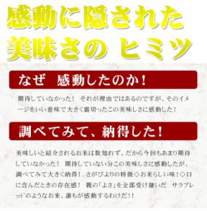 お米 10kg 安い 特A 1等米 佐賀県 選べる精米 さがびより 29年産 米 10キロ 送料無料 安い 北海道・沖縄は発送不可