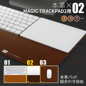 BEFiNE Leather Pad Plus Pad 2 Brown for Magic Trackpad 2