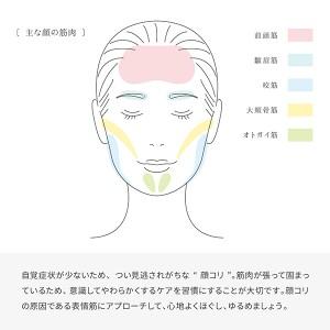 リファリズム( ReFa RHYTHM )送料無料 リファ 美容ローラー 美顔ローラー 防水 ほうれい線 むくみケア セルライトケア 顔コリ ツボ MTG