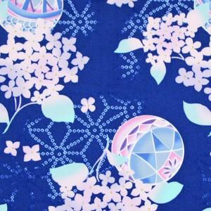 D.毬紫陽花