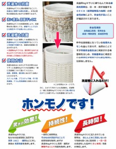 (銀のチカラで洗濯槽の除菌)東和通商 洗濯爽Agキラリ ランドリーAg抗菌